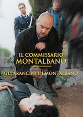 Search netflix Montalbano: Montalbano's Croquettes